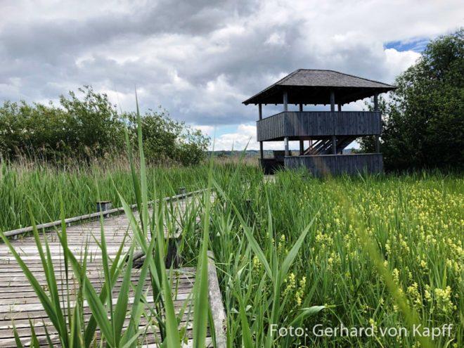 Naturschutz von Diessen am Ammersee