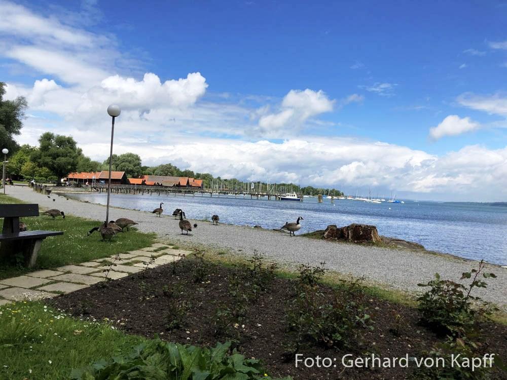 Die Uferpromenade von Diessen am Ammersee